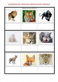 ELBLOGDESAMI.ORG-VOCABULARIO-ANIMALES-SALVAJES-CARNIVOROS-001