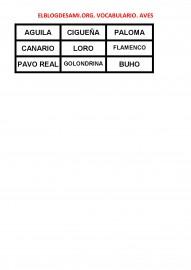 ELBLOGDESAMI.ORG-VOCABULARIO-AVES-002