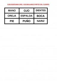 ELBLOGDESAMI.ORG-VOCABULARIO-PARTES-DEL-CUERPO-002