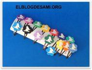 elblogdesami-org-gatos-pinzas