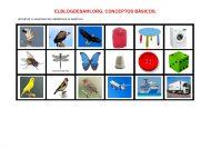 elblogdesami-org-conceptos-basicos-tamanos-002