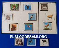 ELBLOGDESAMI.ORG-CAMPOSEMANTICOANIMALES