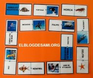 ELBLOGDESAMI.ORG-DOMINO-AACUATICOS