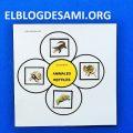 ELBLOGDESAMI.ORG-REPTILESCARNIVOROS (2)