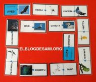 ELBLOGDESAMI.ORG-DOMINO-AVES