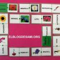 ELBLOGDESAMI.ORG-DOMINO-FLORES