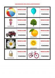 ELBLOGDESAMI.ORG-MASCULINO-FEMENINO-001