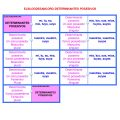 ELBLOGDESAMI.ORG-DDETERMPOSES-001