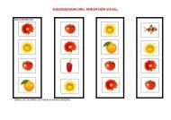 elblogdesami-org-estimulacion-cognitiva-columna-repetida-001