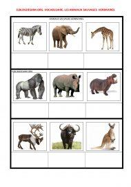 ELBLOGDESAMI.ORG-ANIMALES-HERBIVOROSF (2)